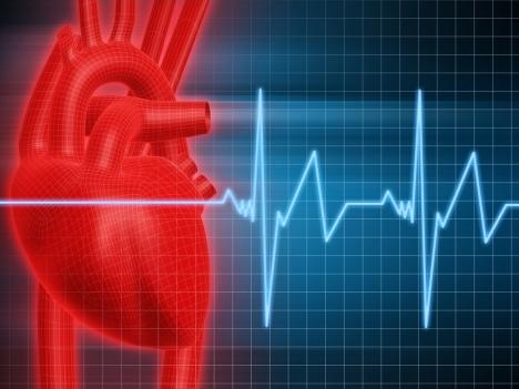 j0438743 mature Market heart